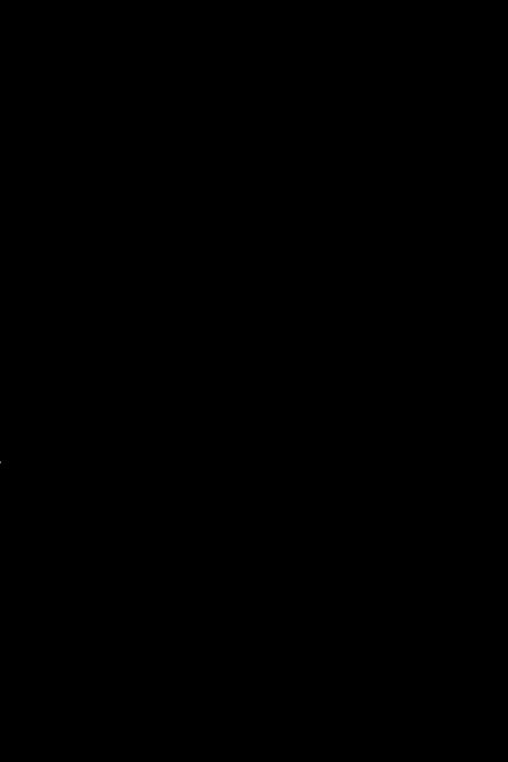 h-lilie, hochauflösend_transparenterHintergrund
